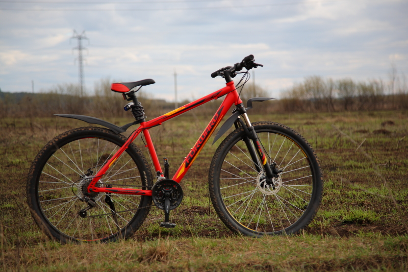 Forward Sporting 2.0